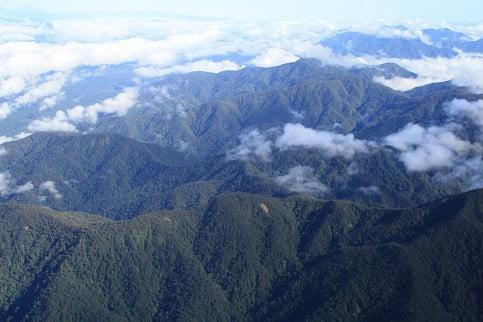 Große Teile des Dschungels in West-Papua, der zu Indonesien gehörenden Westhälfte Neuguineas, sind aufgrund ihrer schweren Zugänglichkeit bis heute unerforscht. Foto: Dominik Wlodarczak Fotoquelle: welt.de
