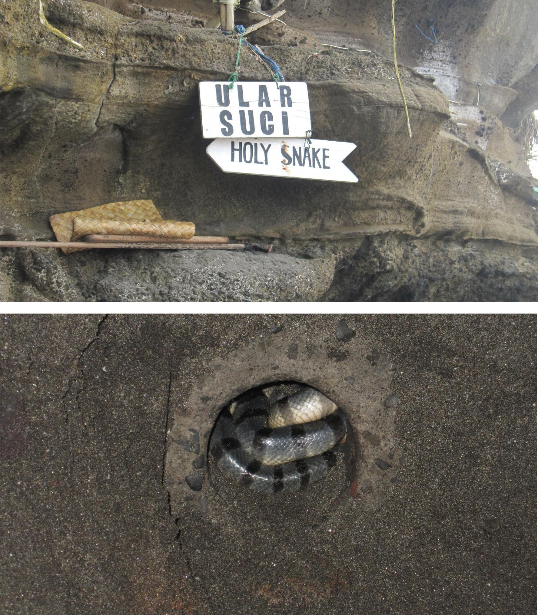 Der Eingang zur Schlangenhöhle und die Schlange selbst