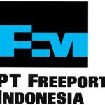 Die Gummigesetze von Indonesien