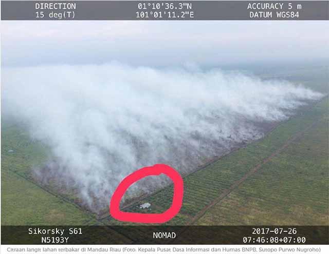 Schwere Waldbrände in Sumatra / Screenshot news.detik.com