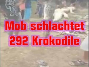 Mob schlachtet 292 Krokodile Foto: YouTube